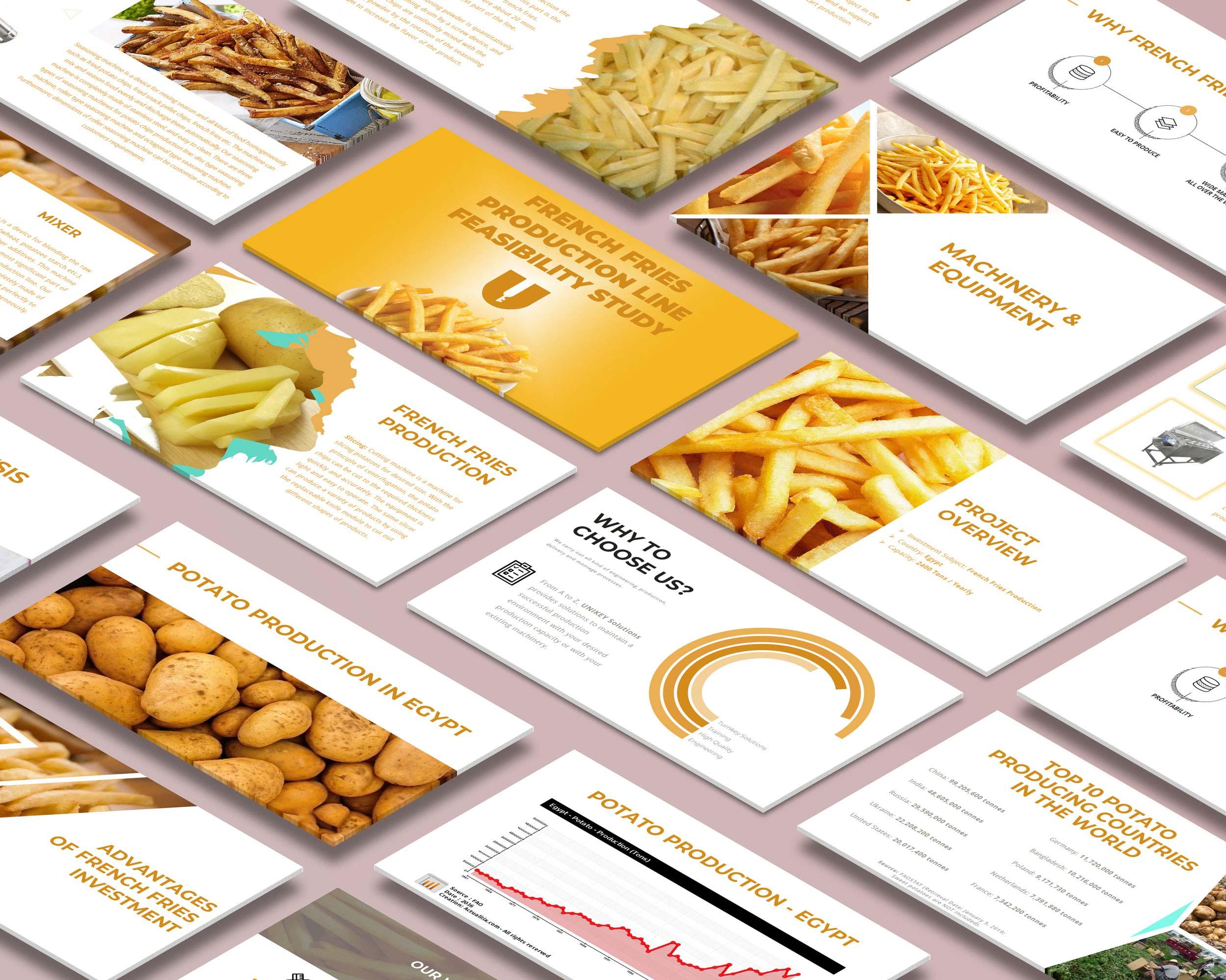 Kızarmış Patates Üretimi Proje Sunumu